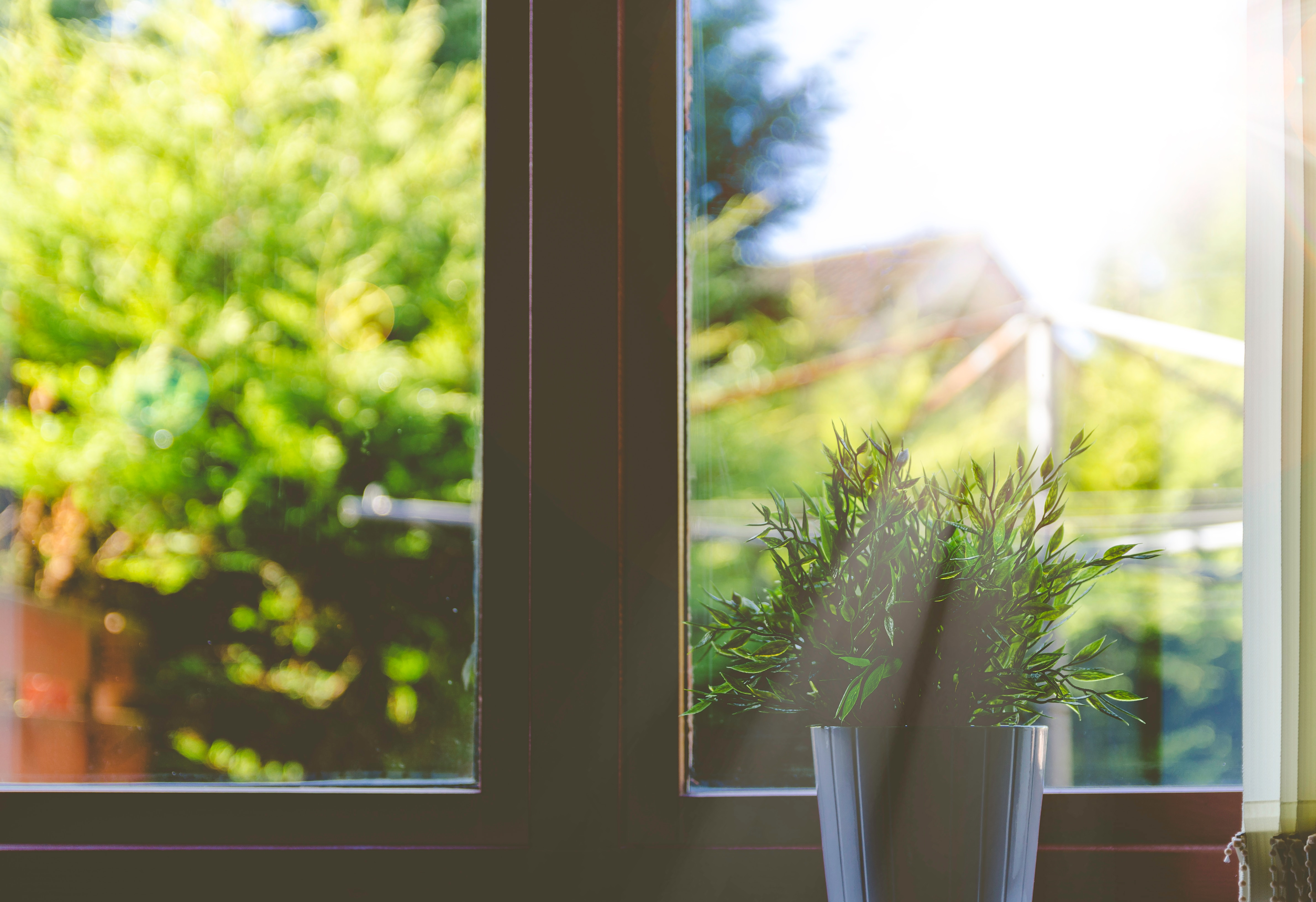 a north facing window offers energy efficiency