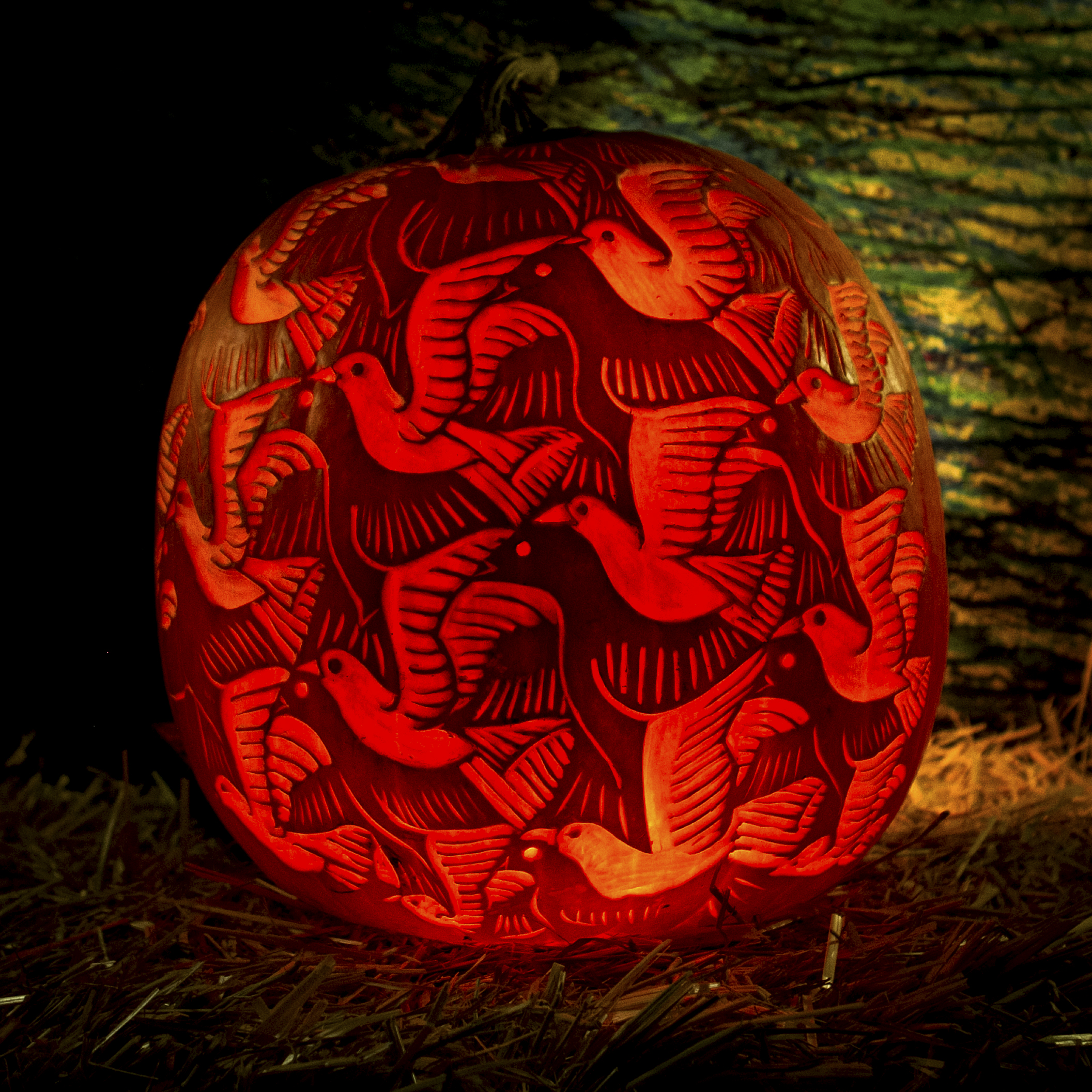 a pumpkin with intricate dove carving
