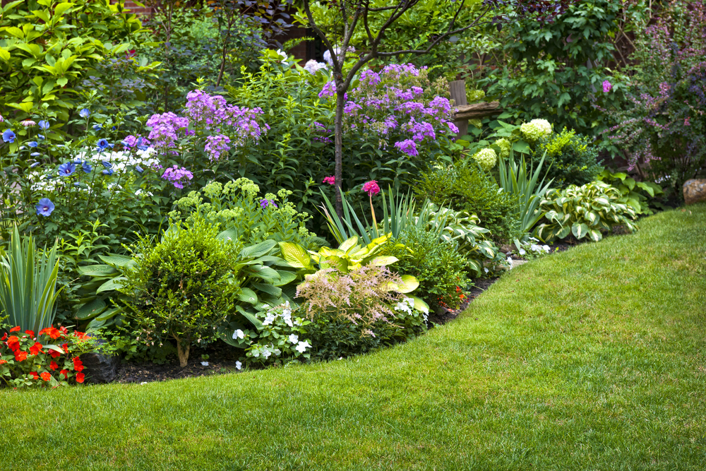 Low maintenance flower beds planting perennials Garden