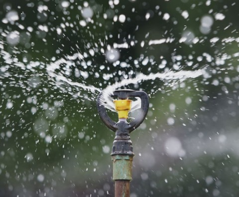 Get your garden watered right