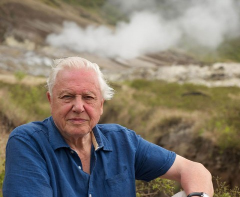 David Attenborough: A life in nature clips