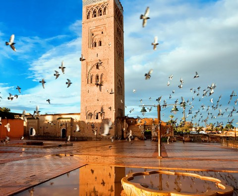 Exploring Morocco: From the souks to the Sahara