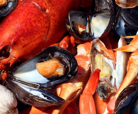 An A–Z guide to preparing shellfish