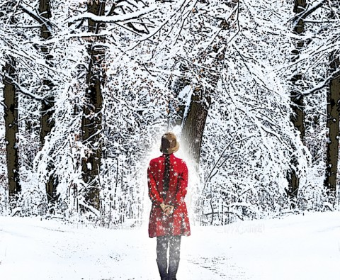 Book review: A Snow Garden and Other Stories by Rachel Joyce