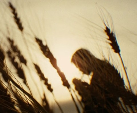 Cult films to see before you die: The Assassination of Jesse James by the Coward Robert Ford