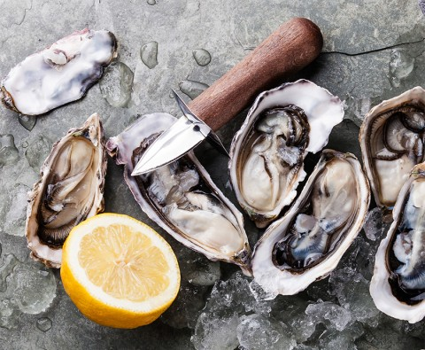 Preparing oysters at home: How to get it right
