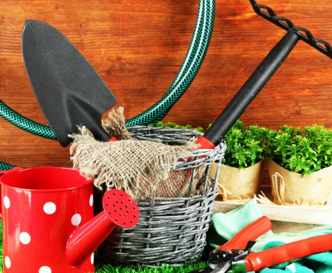 10 of the best gardening tools to use