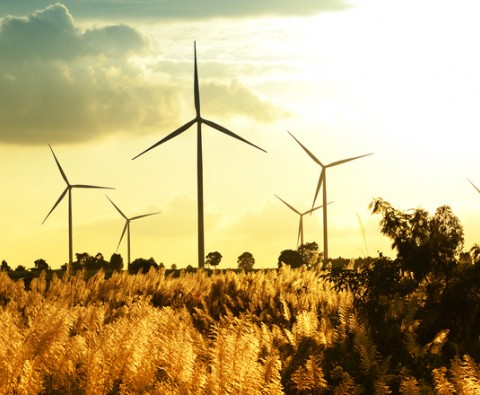 Green investments: what are they?