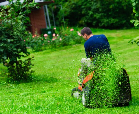5 Ways to keep a lawn pristine
