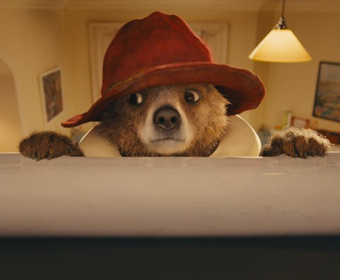 Review: Paddington - The Family Film of 2014