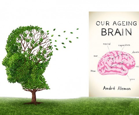 The mysteries of our ageing brain