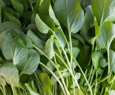 10 Wonderful Ways With Watercress