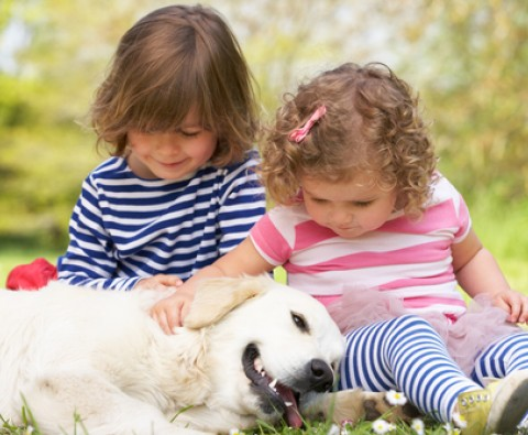 Pets and kids: the pros and cons