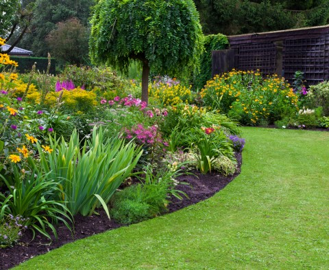 Create your dream garden with these simple steps
