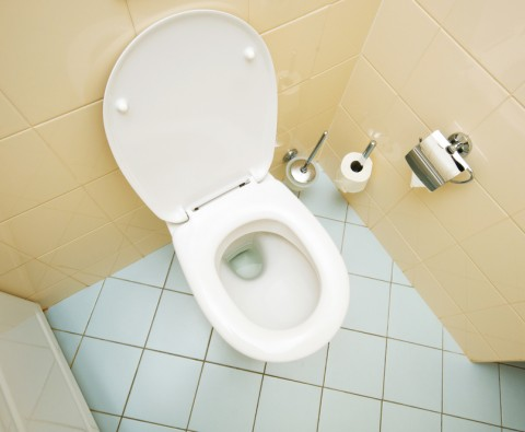 Easy ways to unblock a toilet