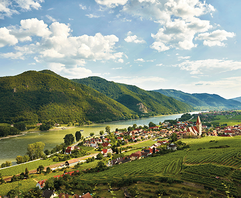 Rediscovering winemaking in Austria