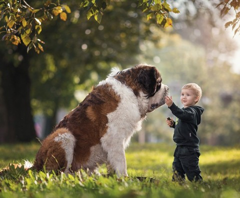 Photo feature: Little children and their big dogs