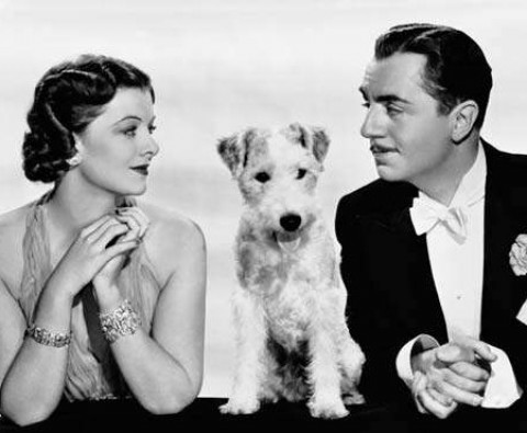 Cinema's most celebrated dogs