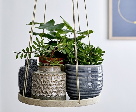 How to create your own indoor garden