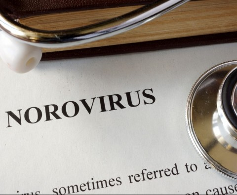9 ways to avoid norovirus
