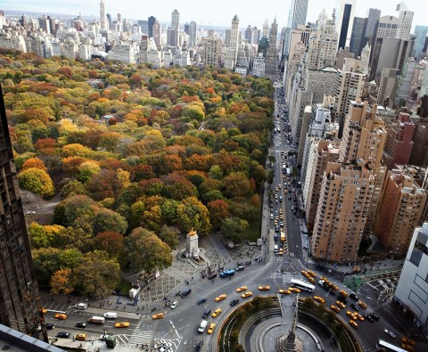 The world's most spectacular urban parks