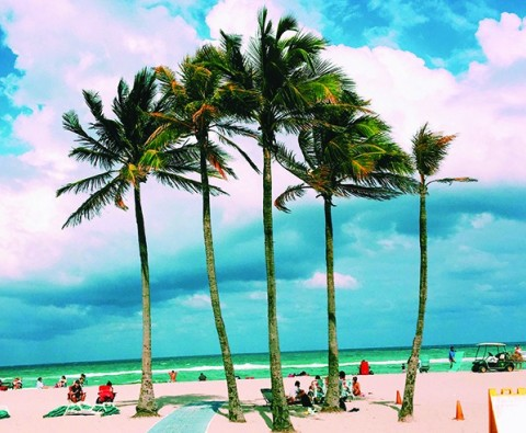 Fort Lauderdale: Beyond the beaches