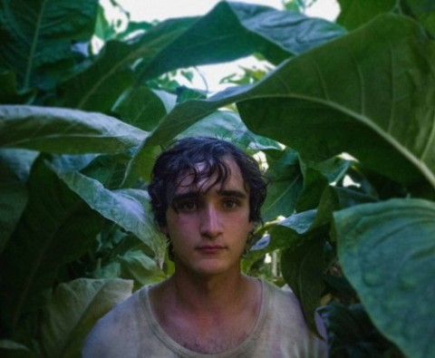 Films you can't miss: Happy as Lazzaro