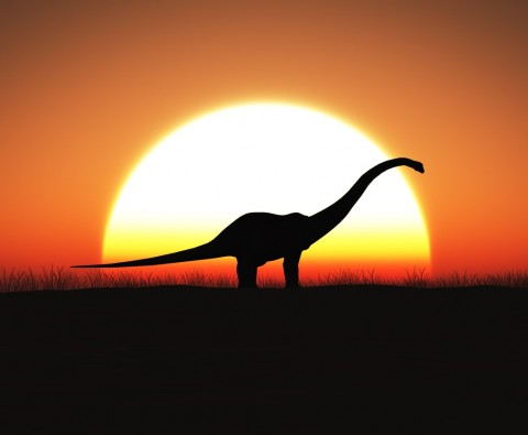Could dinosaurs be brought back to life?