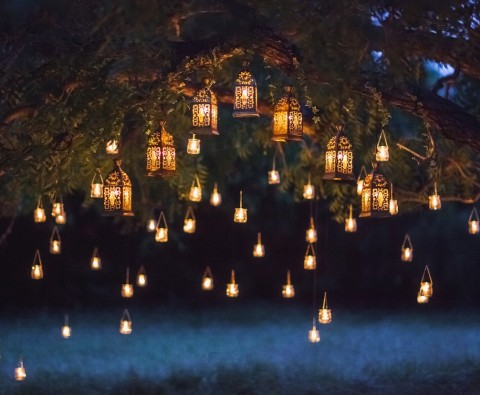 Here's why you should install garden lights