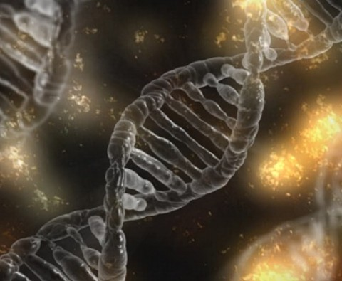 4 Reasons Why CRISPR Gene Editing Is Crucial for Our Future