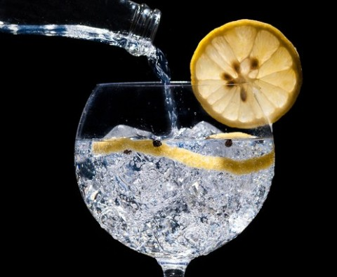 10 Delicious gin and tonic garnishes
