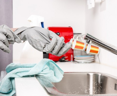 3 Reasons Why You Should Use Professional Domestic Services
