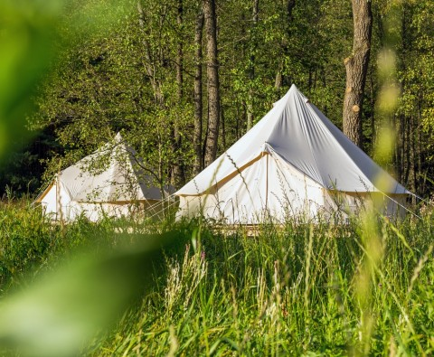 All you need to know about glamping