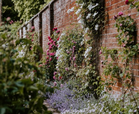 The ultimate guide to garden walls