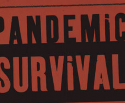 The Ultimate Guide to Surviving the Pandemic