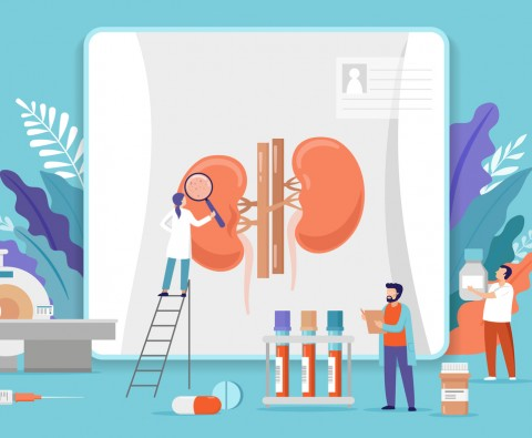 The kidney hormone that helped win a Nobel Prize