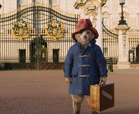 Paddington returns to the big screen
