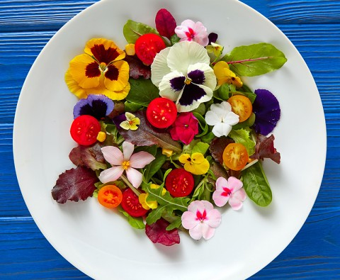10 Edible flowers to plant in your garden