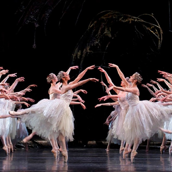 Colorado Ballet S Swan Lake: All You Need To Know About Tchaikovsky's Swan Lake
