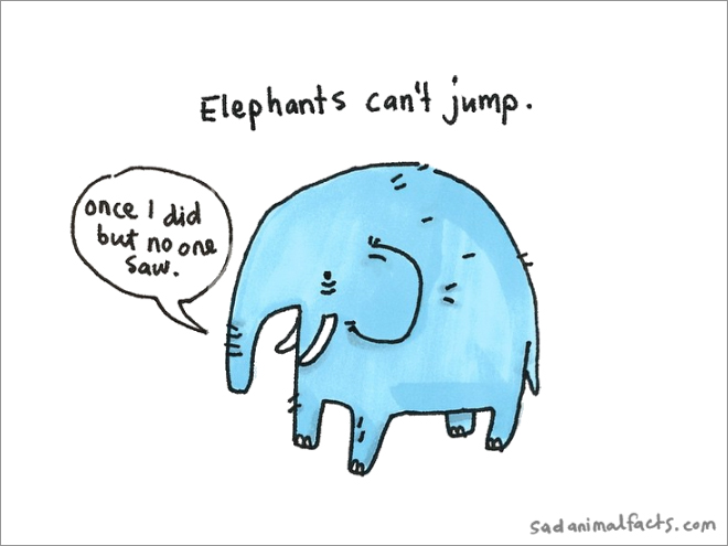 elephant sad fact