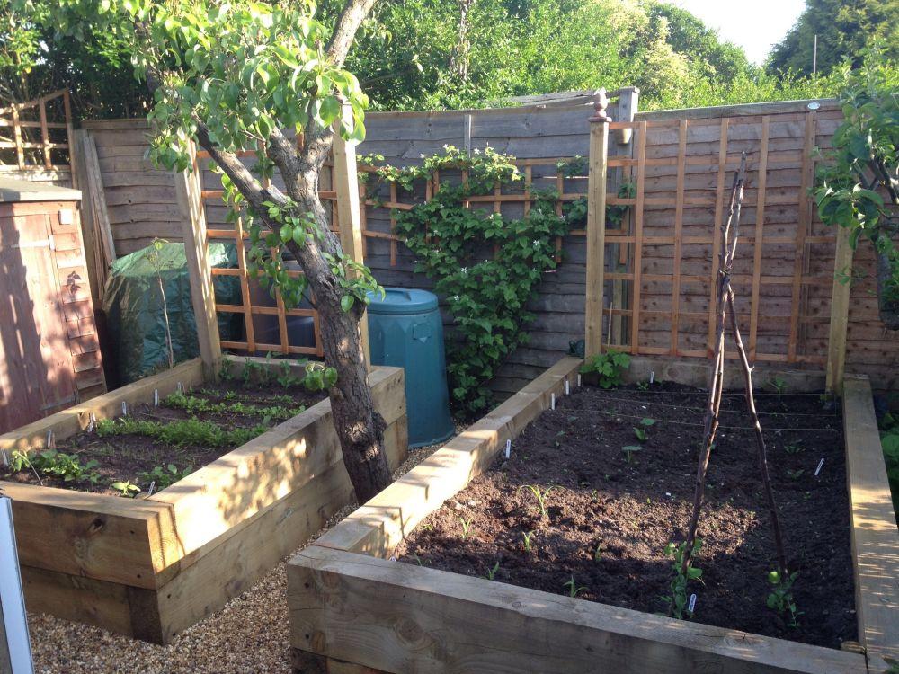 How To Build A Raised Garden Bed Garden Reader S Digest
