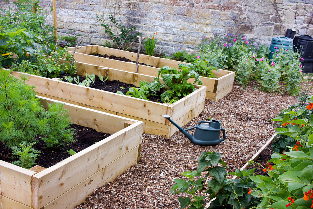 how to build easy raised garden beds