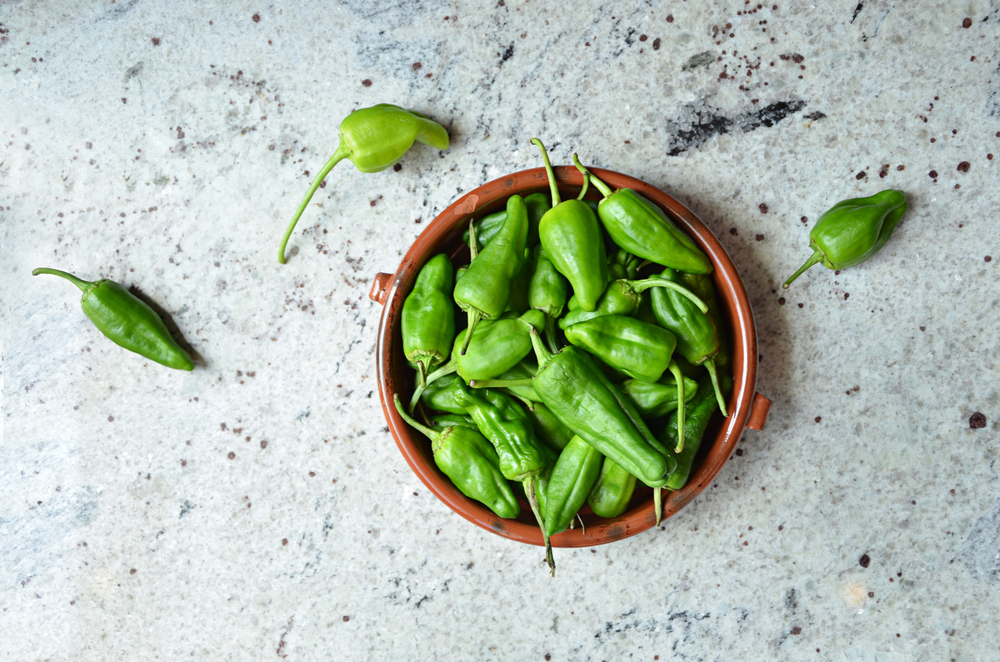 padron chillies