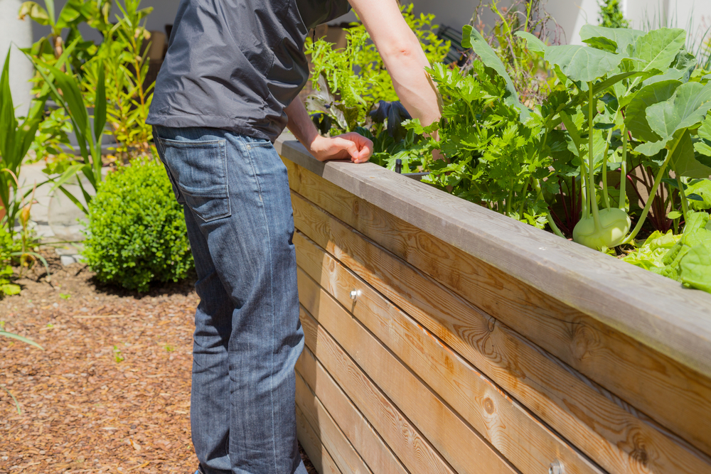 how to build a raised garden bed reader 39 s digest. Black Bedroom Furniture Sets. Home Design Ideas