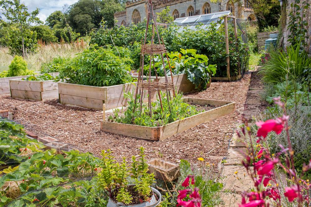 10 Ways To Prepare Your Vegetable Garden For Spring Garden Fruit Vegetables Reader 39 S Digest
