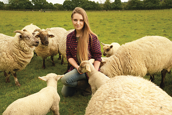 solo shepherdess feeds a lamb