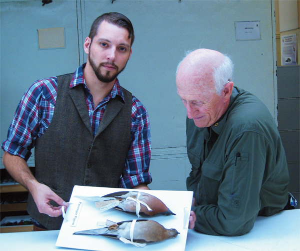 Reviving the Passenger Pigeon