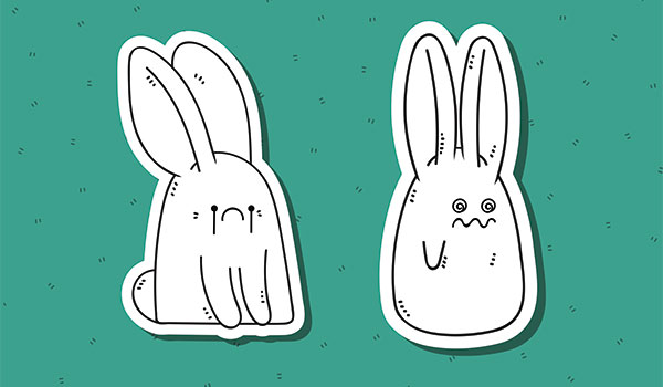 Rejected bunny