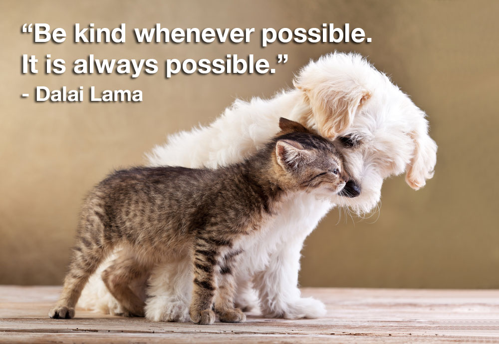 """Be kind whenever possible. It is always possible."""