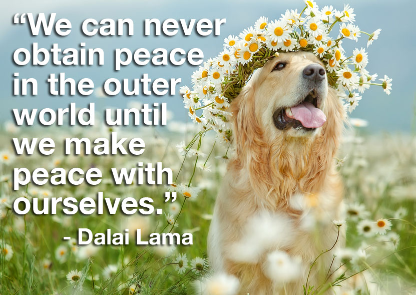 """We can never obtain peace in the outer world until we make peace with ourselves."""